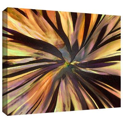 Brushstone Suculenta Paleta Gallery Wrapped CanvasWall Art