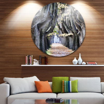 Design Art Tree Outside Lucca Italy Circle Metal Wall Art