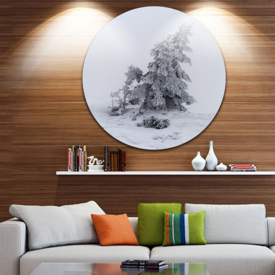 Design Art Grayscale Valley in Frost Landscape Photo Circle Metal Wall Art