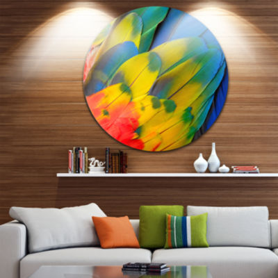 Design Art Scarlet Macaw Feathers Photography Circle Metal Wall Art
