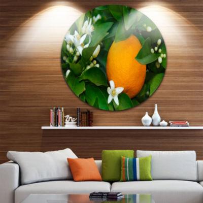 Design Art Orange Blossom Circle Metal Wall Art