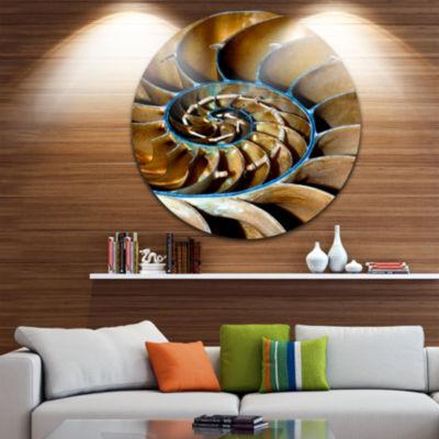 Design Art Brown Large Nautilus Shell Circle MetalWall Art