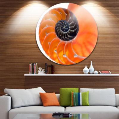Design Art Orange Nautilus Shell Circle Metal WallArt