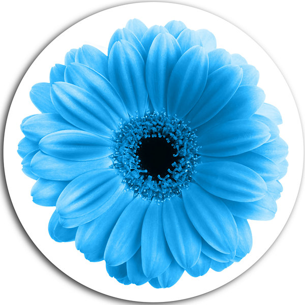 Design Art Isolated Blue Flower Circle Metal WallArt