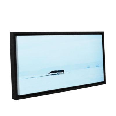Brushstone Distant Fluke Gallery Wrapped Floater-Framed Canvas Wall Art