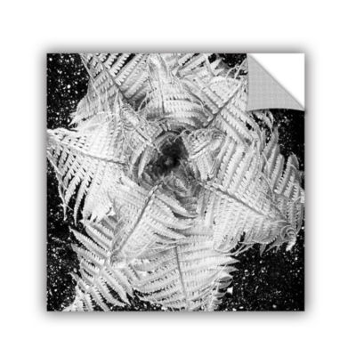 Brushstone Fern Removable Wall Decal