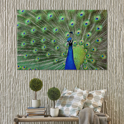 Icanvas Peacock Feathers Canvas Art
