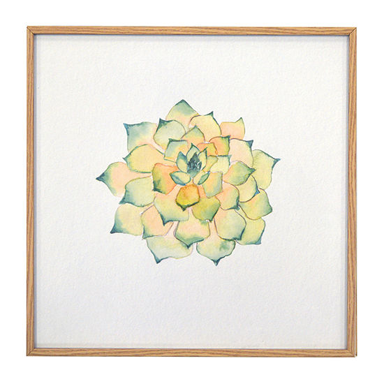 New View Colorful Succulent Framed Artwork