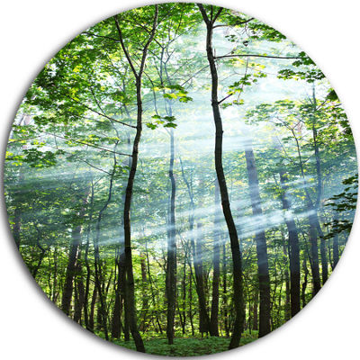Designart Green Sunny Forest Landscape PhotographyCircle Metal Wall Art