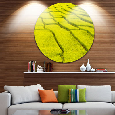 Designart Rice Field View Landscape Photography Circle Metal Wall Art