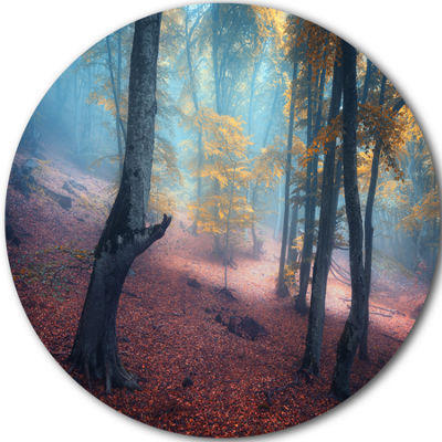 Designart Mysterious Fairytale Yellow Wood Landscape Photography Circle Metal Wall Art