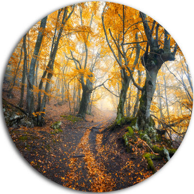Designart Dark Yellow Old Forest in Fog LandscapePhotography Circle Metal Wall Art
