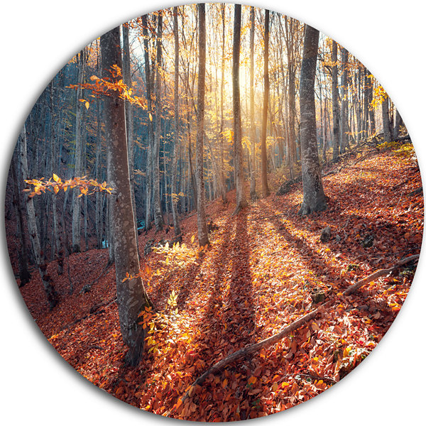 Designart Crimean Mountains Tree Shade Landscape Photography Circle Metal Wall Art