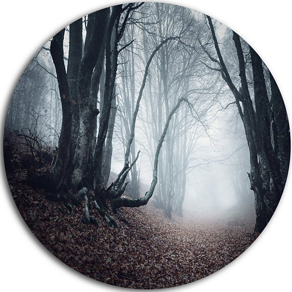 Designart Mysterious Fairytale Foggy Wood Landscape Photography Circle Metal Wall Art