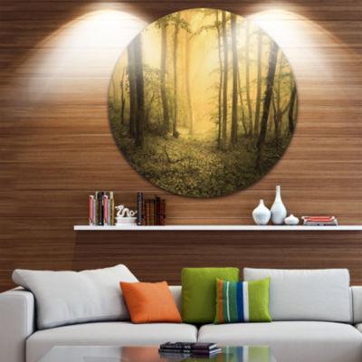Designart Trail Through Yellow Foggy Forest Landscape Photography Circle Metal Wall Art