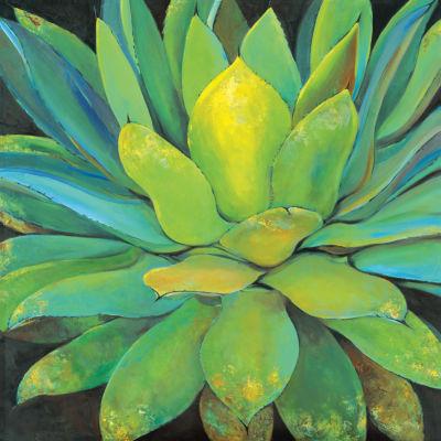 Agave Canvas Art