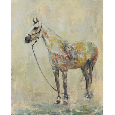 Horse Of A Different Color Canvas Art