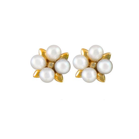 Splendid Pearls Cultured Freshwater 14k Gold 10mm Stud Earrings