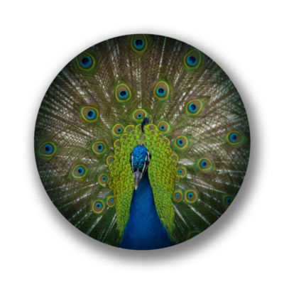 "Metal Wall Art Decor Splendor 24"" Round"""