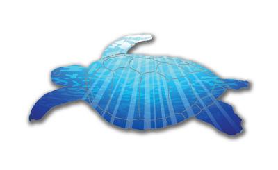 Turtle Metal Wall Art Aquatica Sea Turtle Wall Art