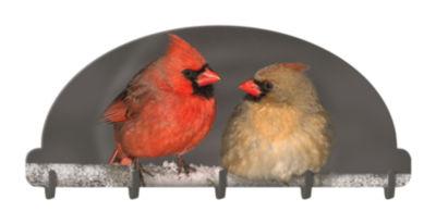 Cardinals Key Rack