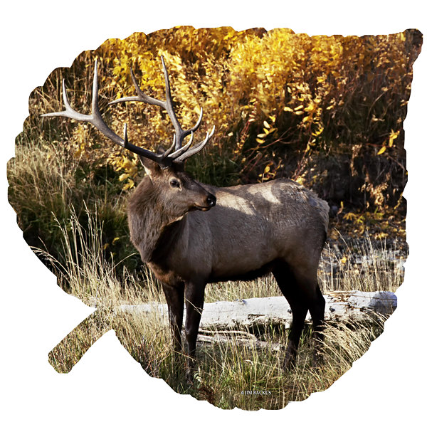 Leaf Wall Decor Metal Wall Art Elk on Large AspenLeaf