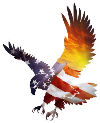 USA Sunset Eagle