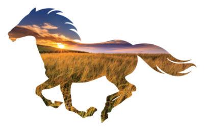 Golden Sun Running Horse