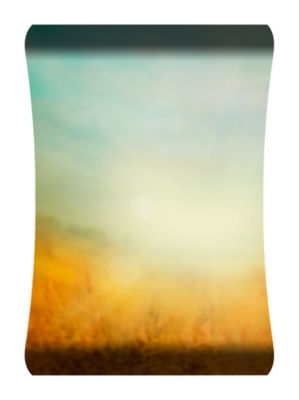 Metal Wall Art Home Decor Sunny Field 36x24 HD Curve