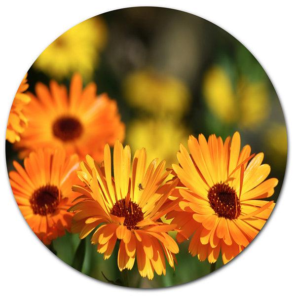 Design Art Blooming Orange Marigold Flowers Disc Floral Circle Metal ...
