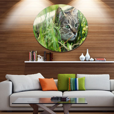 Design Art Lovely Kitten in Grass Animal Metal Circle Wall Art