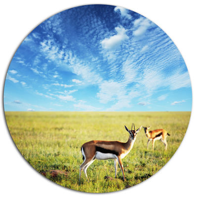 Design Art Antelopes Wandering under Bright Sky African Oversized Circle Metal Artwork