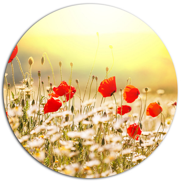 Design Art Wild Meadow with Poppy Flowers Floral Oversized Circle Metal Artwork