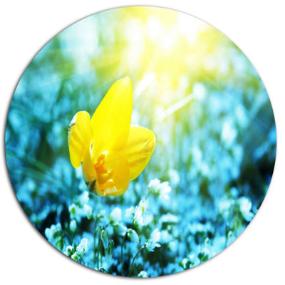 Design Art Beautiful Yellow Spring Flower Floral Metal Circle Wall Art