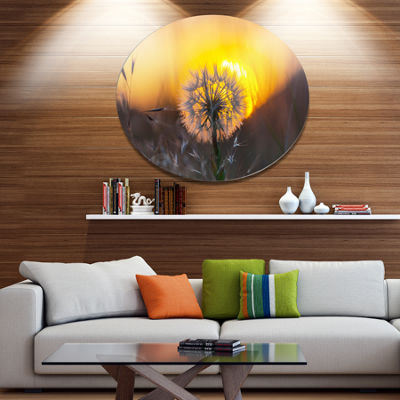 Design Art Stunning Dandelion View At Sunset Floral Metal Circle Wall Art