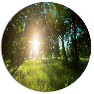 Design Art Sunny Day in Green Forest Meadow Oversized Landscape Oversized Circle Metal Artwork