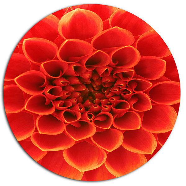 Design Art Orange Abstract Floral Design Disc Floral Circle Metal Wall Decor