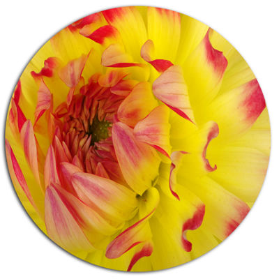 Design Art Smooth Yellow Red Petals Close Up DiscFloral Circle Metal Wall Decor