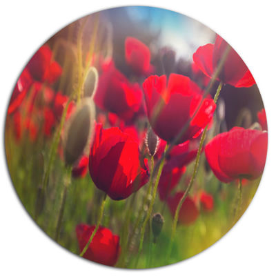 Design Art Thick Red Poppy Flowers Disc Floral Circle Metal Wall Decor