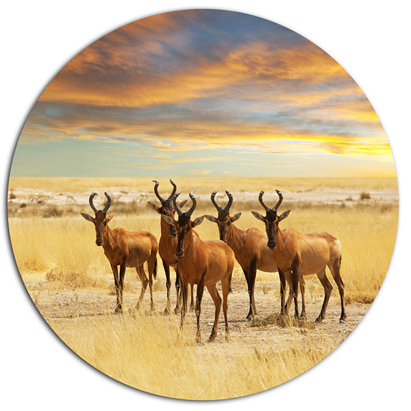 Design Art Herd of Antelope in Grassland Disc Extra Large African Circle Metal Wall Decor