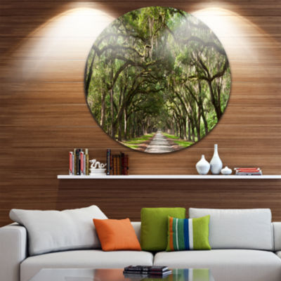 Design Art Live Oak Tunnel Disc Photography CircleMetal Wall Art