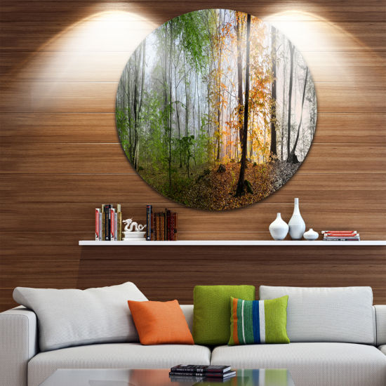 Design Art Morning Forest Panorama Landscape Photography Circle Metal Wall Art