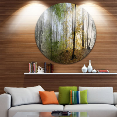 Design Art Morning Forest Panoramic View LandscapePhotography Circle Metal Wall Art