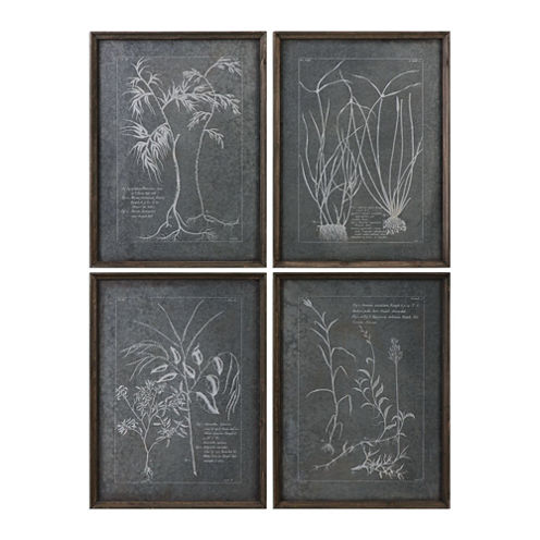 Root Study Wall Art (Set Of 4)