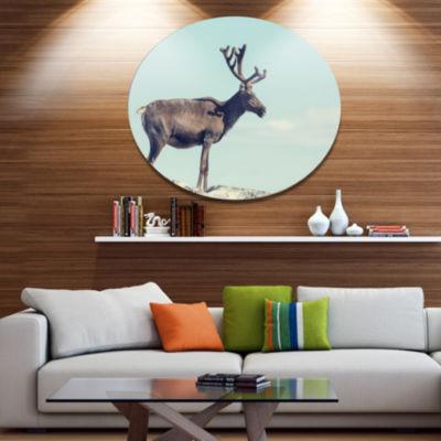 Designart Large Reindeer in Norway Abstract MetalCircle Wall Art