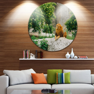 Design Art Big Lion Lying On Stones in Zoo Landscape Round Circle Metal Wall Art