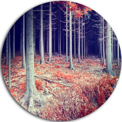 Design Art Beautiful Fall Forest Panorama Landscape Round Circle Metal Wall Art