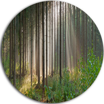 Design Art Green Forest in Mist Panorama LandscapeRound Circle Metal Wall Art