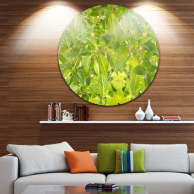 Design Art Bright Fuchsia Green Foliage Floral Round Circle Metal Wall Art