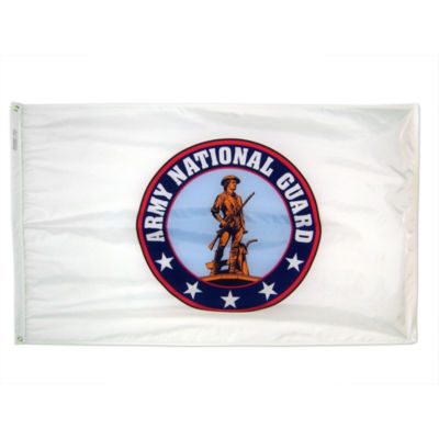 Army National Guard Flag  3x5 ft. Nylon By Annin Flagmakers  Model 907